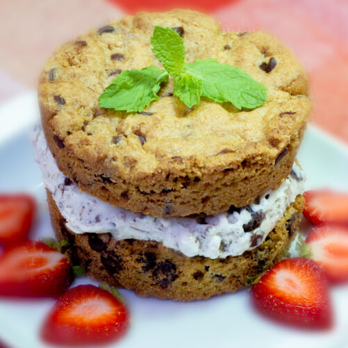 Ice Cream Sandwich Kit